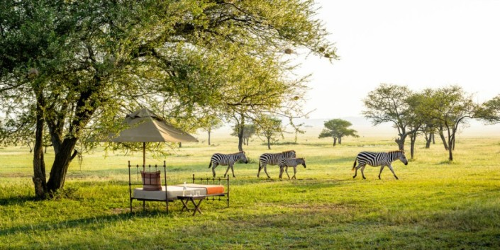 Singita Sabora camp wildlife