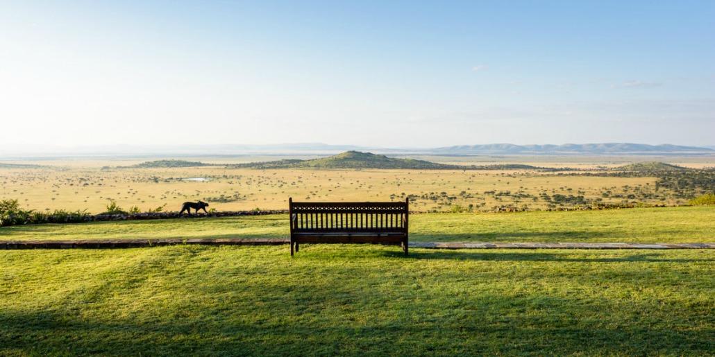 Serengeti Grasslands Hills