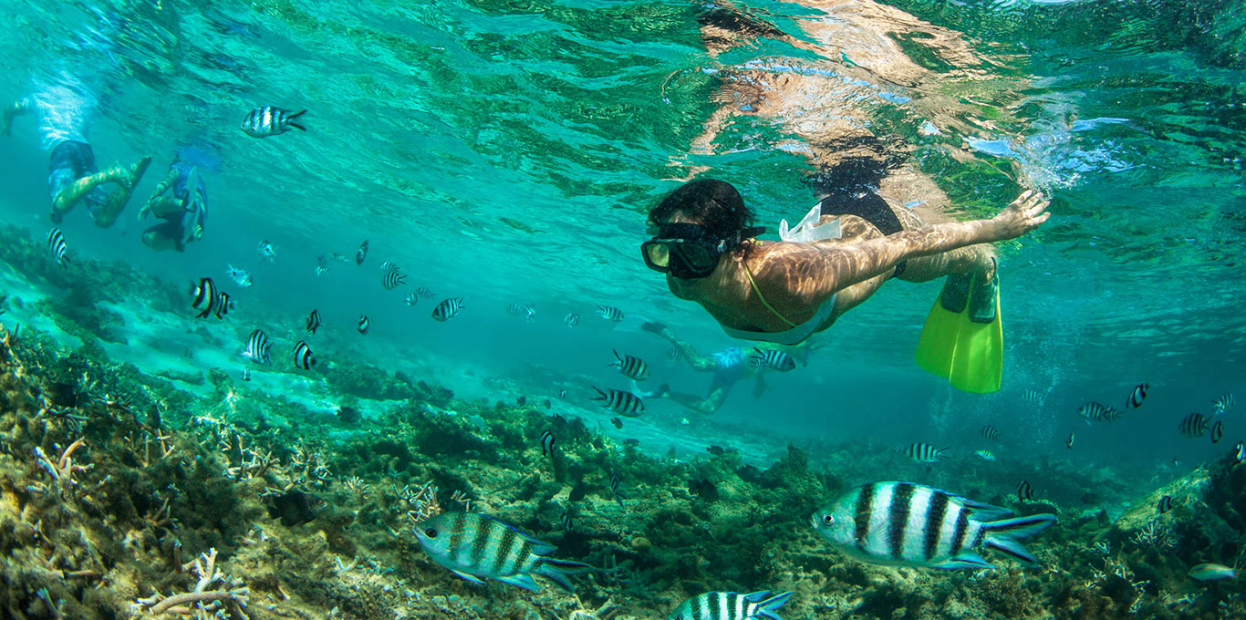Snorkeling in the Indian Ocean