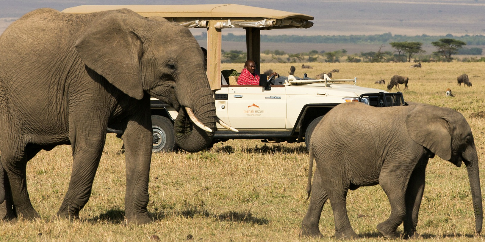 Game Drives at Maasai Mara