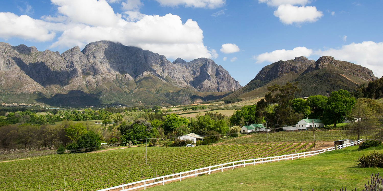 Sir Richard Branson Franschhoek Vineyard