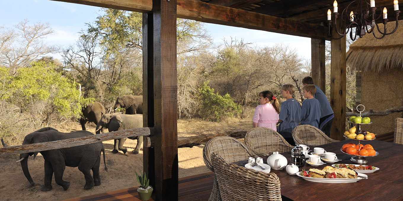 Camp Jabulani Zindoga Villa patio with view of the elephants