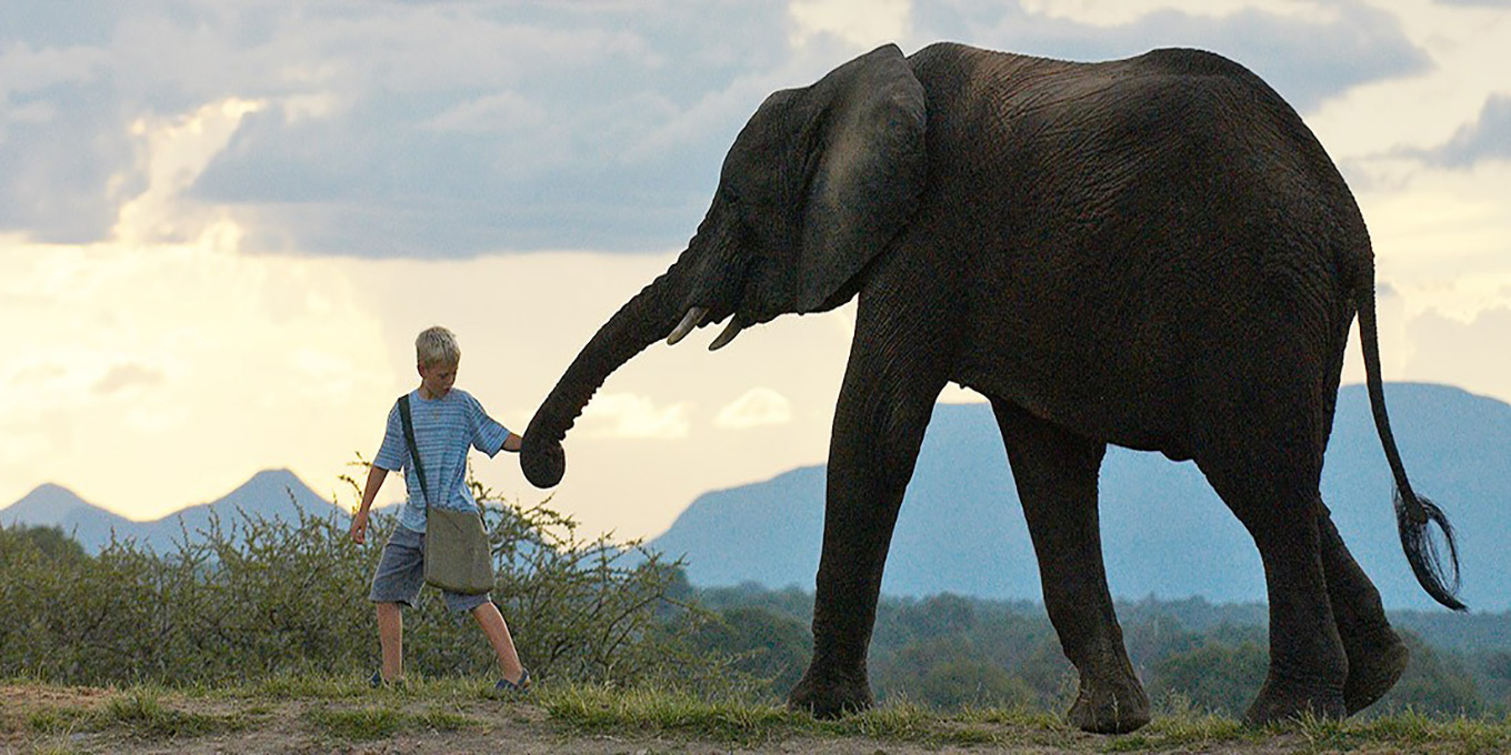 Elephant Experience in Camp Jabulani luxury safari for the family